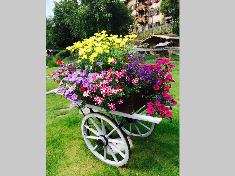 A cart garden or planter is art piece that brings motion, beauty and focus to your garden. Can be adapted to tropical theme, flower theme or even a wild theme.