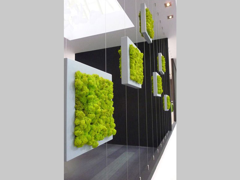 Hanging gardens form a wonderful green screening wall. It can be used for decoration, increasing the green feel of your home or even to screen unwanted views.