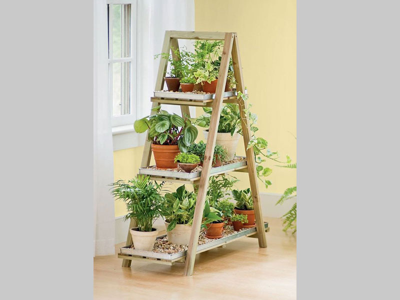 A ladder garden is both compact and space filling. Plants of different soil types can be harmoniously grown to create a rich and affluent indoor or outdoor art piece.